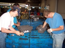 Members packing auto parts on-site.